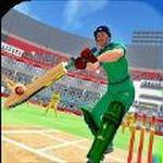 IPL板球联盟安卓版 V2.0