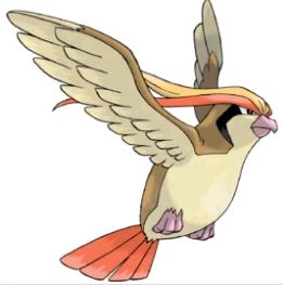 《宝可梦大探险》什么技能最适合大比鸟 大比鸟技能搭配技巧